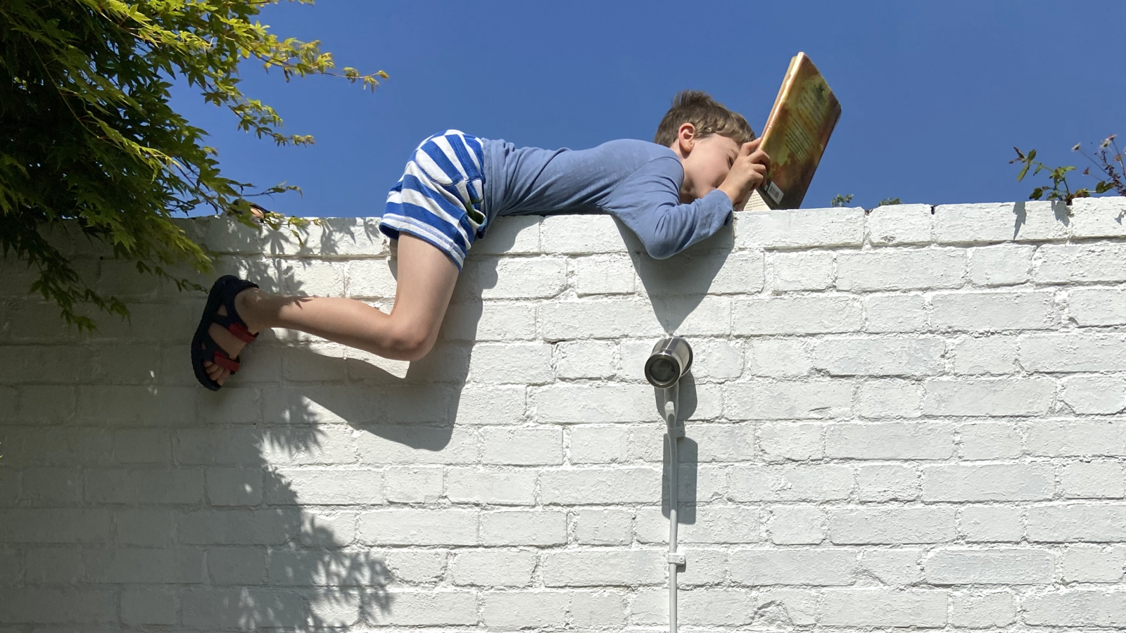 One memorable day in lockdown MAMA.codes CEO Liane let her son scale a garden wall and read up there for a change.